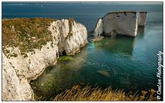 Old Harry Rocks, Dorset, England (cee live) Tags: chalk england flickr canon flickrtravelaward rocks