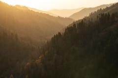 Morton Layers (Travis Rhoads) Tags: 2018 sonyalphaa9ilce9 sony70200f28gm reallyrightstuff bh55 rrspcl01 tvc33 goldenhour landscapephotography mountains nationalpark copyright2018 travisrhoadsphotography northcarolina greatsmokymountainnationalpark mortonoverlook