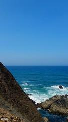 Selvagem e agreste (antoninodias13) Tags: imensidão rumor aromas caminhos falésias oceanoatlântico costaportuguesa selvagem aljezur faro algarve portugal