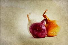 Onion 3 (Leslie Victor) Tags: img01493 onion vegetable food texture