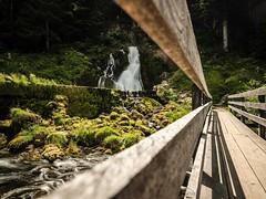 La Gruyère - Jaun / Ref.02343 (FRIBOURG REGION) Tags: sommer fribourgregion suisse jaun berge schweiz switzerland montagne alpen alps alpes lagruyère été fribourgrégion préalpes voralpen prealps summer grandtourdesvanils mountains freiburg ch