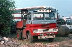 Berresford's Scammell (Renown) Tags: lorry lorries truck recovery breakdown wrecker tow towing scammell trunker berresford motors cheddleton stokeontrent staffordshire