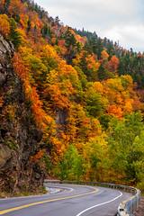App Gap Fall - Vermont, 2016 (Dino Sokocevic) Tags: autumn fall foliage fallfoliage newengland vermont vt outdoors landscape nikon nikonusa colors colorful color