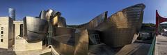 Guggenheim Bilbao Panorama (Tom Willett) Tags: guggenheim bilbao spain frankgehry museum gallery architechture guggenheimmuseum museo