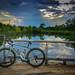 Boulder Pond, The Parklands