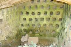La Necropoli di Centocamere_47