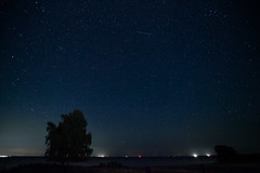 _MG_6757 (ro3duda) Tags: denmark nordsee ostsee northsea eastsea summer beach sand seaside dänemark
