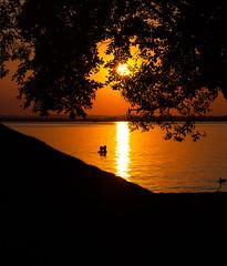 Idylic Sunset (free3yourmind) Tags: idylic sunset sun tree couple swim swimming romantic romance minsk belarus lake water