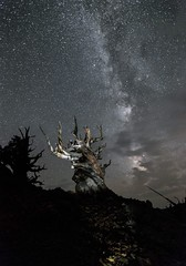 Worlds Apart (_tkol_) Tags: 6d astrophotography california longexposure 1635 milkyway lightroom canon
