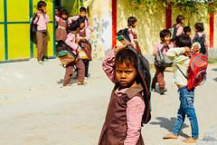 Indian Schoolchildren, Mathura India (AdamCohn) Tags: adamcohn india mathura vrindavan children holi kids school schoolkids wwwadamcohncom