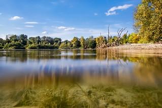Lake vegetation | Olympus Tough TG-5