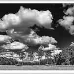 IMGP6803-bw-Rahmenkl thumbnail