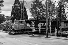 Fort Langley Village - CNR Locomotive #5639 (SonjaPetersonPh♡tography) Tags: langley fortlangley townshipoflangley bc britishcolumbia canada town tourists shops gallery restaurants quaint village antiques gloverrd fraserriver parks cnr canadiannationalrailway locomotive train