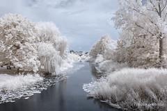 Altmühl River - Infrared Bavaria (gporada) Tags: germany bavaria mittelfranken altmühlriver ornbau altmühlbrücke d40 nikon infrared summer 720nm ngc travelling