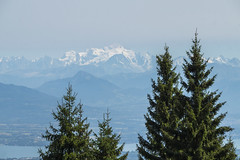 Mountains and trees (charlespilon) Tags: mountains mountain montagnes montagne trees tree arbres arbre landscape paysage