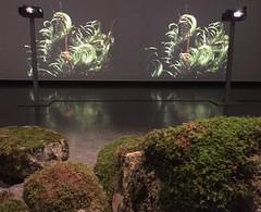 """Andrea Buttner: """"Shepherds and Kings"""" (svennevenn) Tags: utstillinger exhibitions bergen andreabuttner mose moss bergenkunsthall"""