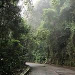 Estrada das Paineiras thumbnail