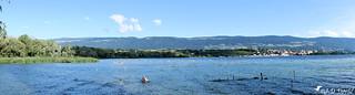 Réserve naturelle du bout du lac