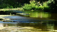 Keila waterfall (Keila-Joa, Estonia, 20180813) (RainoL) Tags: crainolampinen 2018 201808 20180813 august eesti estonia fz200 geo:lat=5939521630 geo:lon=2429433660 geotagged harjumaa keilajuga keilawaterfall keilajoa lääneharju river summer waterfall viro est