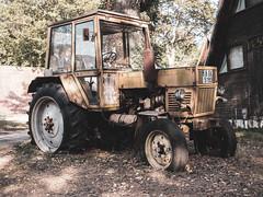 an other old tractor (spline_splinson) Tags: bulgaria blacksea bulgarien rust schwarzesmeer tractor traktor аврен warna bg