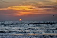 United States of America (USA), Florida (Fl), St. Pete Beach (St/W) Tags: unitedstatesofamerica usa florida fl stpetebeach nikondf nikkor35462485afsvr nikcep4