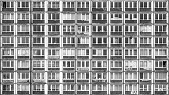the idea of ant-living (bilderkombinat berlin) Tags: ⨀2014 hallesaale germany sachsenanhalt apartments eu ddr architecture blackwhite deutschland ost city decay window concrete socialism