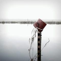 #47 (nicolas.eliard) Tags: lumières lights morning matin winter hiver frozen gel nicolaseliard eliard normandy normandie manche shampooing marais