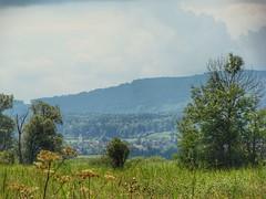 Swiss landscape (sander_sloots) Tags: maur village swiss landscape hills mountains trees landschap zwitserland bomen heuvels bergen dorpje switzerland greifensee uster bezirk zürcher oberland