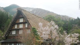 Gasshō-zukuri houses (合掌造り) in Shirakawa Go (白川郷), Gifu prefecture (岐阜县)