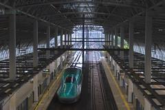 20180806_f05 : 八戸駅 (G-TAKI) Tags: japan aomori hachinohe 日本 青森 八戸 八戸駅 rail railway shinkansen 新幹線 はやぶさ