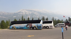 Tour Buses and Rocky Mountains, Sulphur Mountain Gondola, Banff, Alberta, Canada (dannymfoster) Tags: canada alberta banff rockies rockymountains park nationalpark banffnationalpark gondola banffgondola sulphurmountaingondola banffsulphurmountaingondola bus tourbus