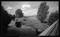 analog Test: NO filter, BROOKS PLAUBEL VERIWIDE 100 with Super-Angulon 8/47mm, Rollei INFRARED (Dierk Topp) Tags: clouds 6x9 analog bw bäume brooksplaubelveriwide100 kodakd76 monochrom plaubel sw superangulon847mm trees veriwide wald wood