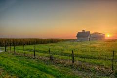 End of Summer at the Barn and Crib (kendoman26) Tags: hff happyfencefriday fence barn crib sunrise hdr nikhdrefexpro2 niksoftware nikon nikond7100 tokinaatx1228prodx tokina tokina1228 ruralscene rural ruralamerica grundycountyillinois