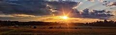 Farm Country Sunset Panoramic (Steve InMichigan) Tags: panoramic sunset sunrays clouds sunsetglow countryroad countryside canonfl50mmf18 fotasyfdfleosmlensadapter canoneosmcamera radioactivelens
