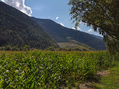 20180823_151923 (k.atkos) Tags: brig visp switzerland nature landscape mountains schweiz valais walls st german