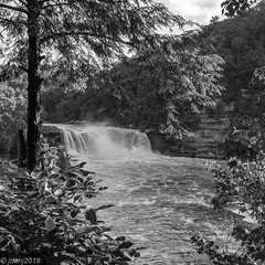 Falls at Cumberland Falls State Park, KY (Black and White Version) (JuanJ) Tags: nikon d850 lightroom art bokeh nature lens light landscape white green red black pink sky people portrait location architecture building city iphone iphoneography square squareformat instagramapp shot awesome supershot beauty cute new flickr amazing photo photograph fav favorite favs picture me explore interestingness wedding party family travel friend friends vacation beach corbin kentucky ky falls cumberland state park usa america water trees grass tamron