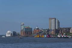 Hamburg 05062018 81 (Dirk Buse) Tags: hamburgsanktpauli hamburg deutschland deu germany elbe de fluss panorama city stadt color colour farbe urban perspektive mft mu43 m43