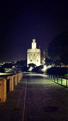 La Torre del Oro.Sevilla (Martabarbero) Tags: andalucía sevilla torredeloro fotografiaurbana arquitectura luz noche