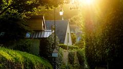 Le soir à Landemer (Torsten Reuschling) Tags: lendemer soir evening abend light licht lumièredouce france normandie lamer urvillenacqueville frankreich sanfteslicht softlight