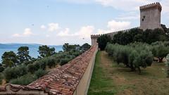 Castiglione del Lago, Italy (Earthman.) Tags: castiglionedellago italy umbria x100t earthman trasimeno lagotrasimeno europe olivetree olivetrees castle