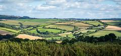 Rolling Devon landscape, South Hams (Bob Radlinski) Tags: devon england europe greatbritain southhams uk travel em1d0517orf