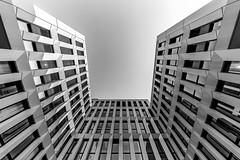 \_/ I E \I/ (Blende1.8) Tags: wuppertal islandufer ohligsmühle germany deutschland modernearchitektur modernarchitecture weitwinkel ultraweitwinkel sony sel1224g 1224mm ilce7m3 a7m3 a7iii wideangle architecture architektur facade facades fassade windows fenster perspective monochrome mono monochrom schwarzweis bw blackandwhite black white nrw