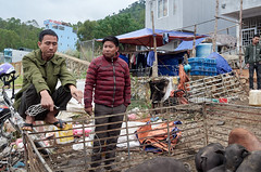 Stallwache (Photoauge.) Tags: vietnam vnm geo:lat=2327641470 geo:lon=10536139540 geotagged thịtrấnđồngvăn market markt