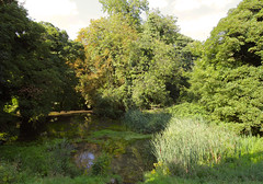 Village Pond Snailwell Cambs (Adam Swaine) Tags: cambs cambsvillages villageponds ponds trees nature englishvillages english england canon eastanglia beautiful water walks ukcounties uk countryside counties 2018 flora green greatbritain
