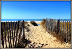 Plage de MONTALIVET (Les photos de LN) Tags: plage beache sable paysage nature barrière estuaire océanatlantique montalivet aquitaine sudouest nouvelleaquitaine horizon ciel médoc
