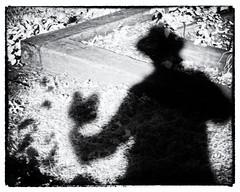 IP270: A shadowy exemplar (Thiophene_Guy) Tags: thiopheneguy originalworks olympusxz1 xz1 infrared r72 hoyar72infraredfilter nearinfrared ironphotographerchallenge utata:project=ip270