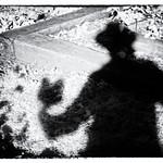 IP270: A shadowy exemplar thumbnail