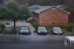 Cars In Flood Water (dccradio) Tags: lumberton nc northcarolina robesoncounty outdoor outdoors outside nature storm stormy rain rainy raining hurricane florence hurricaneflorence september saturday evening latesummer earlyautumn earlyfall tree trees foliage greenery treebranch treebranches branch branches sky cloudy overcast nikon d40 dslr building apartmentbuilding brickbuilding architecture toyota car flood flooding floodwater jeep suv lincoln mkz paved pavement shrub shrubs bush bushes floodwaters bodyofwater