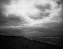 Dark beach (Rosenthal Photography) Tags: dänemark washis50 20180706 meer schwarzweiss mamiya7 asa50 6x7 epsonv800 mittelformat urlaub nordsee dünen strand ff120 houvig analog rodinal12520°c11min landscap seascape northsea sea beach dunes mood blackandwhite summer july denmark danmark mamiya 80mm f4 washi filmwashi washis rodinal 125 epson v800