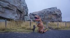 "Rex meets Toto aka ""George the pup"" (John Andersen (JPAndersen images)) Tags: dino dog fun geology glacial gloomy okotoks trex"